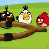 Безумие Сердитых Птиц