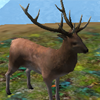 Охота на Животных 3Д