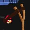 Злые Птицы Рио