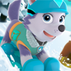 Щенячий Патруль: Снежный Спуск