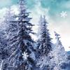 Снежный Зимний Побег