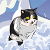 Побег Ледяного Кота