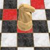 Головоломка Шахматного Коня