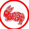 Весёлый Прыгающий Кролик