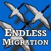 Последняя Миграция