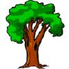 Сруби Дерево