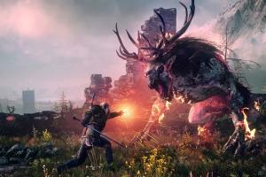 The Witcher 3 решили не снабжать средствами DRM-защиты