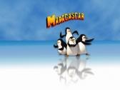 Картинка из Мадагаскар 3 - Вращай и Устанавливай