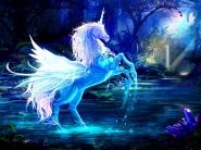 Картинка из Магия