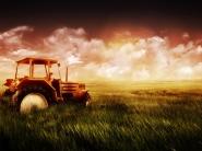 Картинка из Игры Ферма