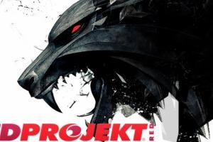 CD Projekt RED: из пиратов в миллионеры