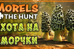 Симулятор Morels: The Hunt зовет на «тихую» охоту